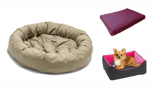 Choosing a dog's bed